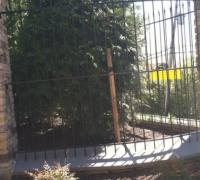 74-new-iron-fence