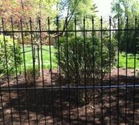 77-new-iron-fence